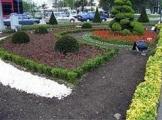 Tulipa Çiçek Peyzaj 0532 414 7124 Osmangazi de Peyzaj Firmaları